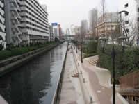 新芝運河全景の写真