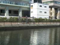 高浜運河2の写真